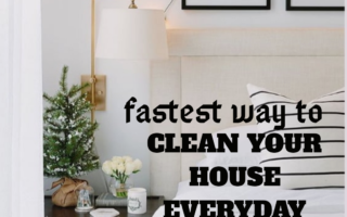 7 Fastest Way to Clean Your House Every Day